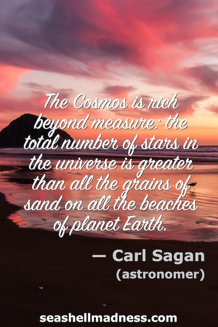 Carl Sagan Beach Quote: The total number of stars in the universe is greater than all the grains of sand on all the beaches on planet Earth.