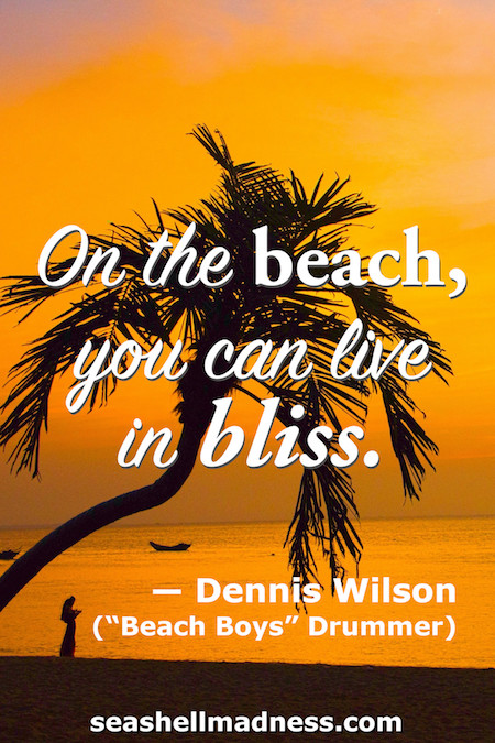 Dennis Wilson Beach Quote: On the beach, you can live in bliss