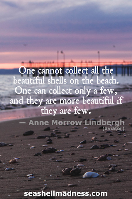 Anne Morrow Lindbergh Beach Quote: One cannot collect all the beautiful shells on the beach. One can collect only a few, and they are more beautiful if they are few.