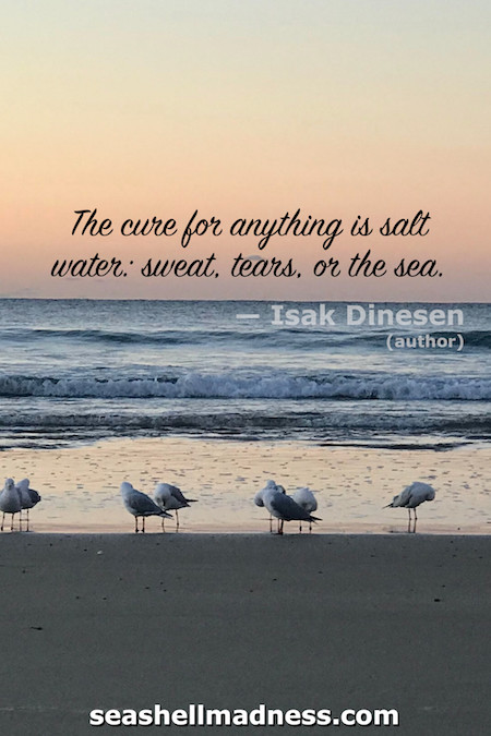 Isak Dinesen Beach Quote: The cure for anything is salt water: sweat, tears, or the sea.