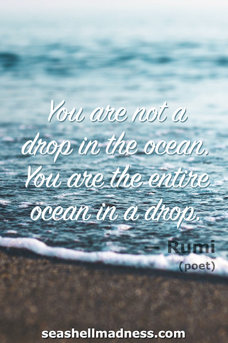 Rumi Beach Quote: You are not a drop in the ocean, you are the entire ocean in a drop.