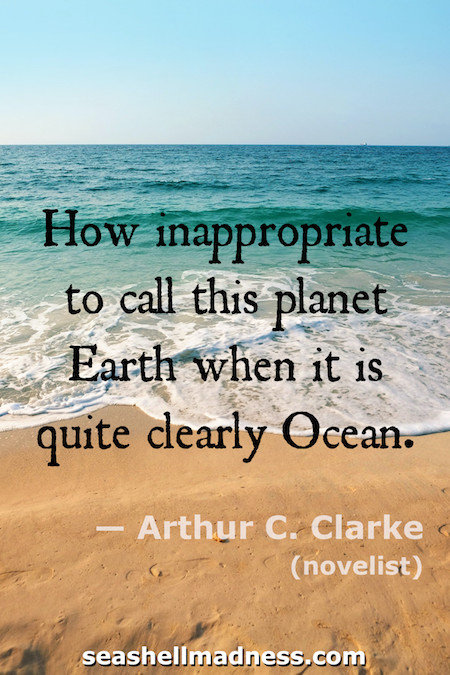 Arthur C. Clarke Beach Quote: How inappropriate to call this plane Earth when it is quite clearly Ocean
