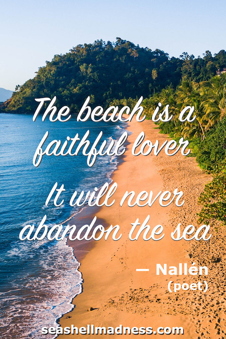 Beach Quote: The beach is a faithful lover. It will never abandon the sea.