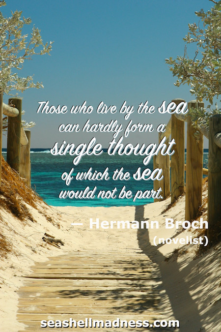 Hermann Broch Beach Quote: Those who live by the sea can hardly form a single thought of which the sea would not be part.