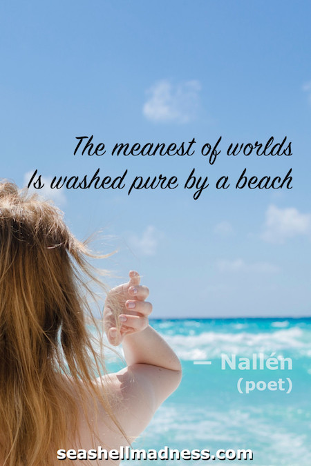 Beach Quote: The meanest of worlds is washed pure by a beach