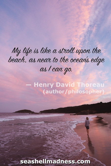 Henry David Thoreau Beach Quote: My life is like a stroll upon the beach, as near to the ocean's edge as I can go.