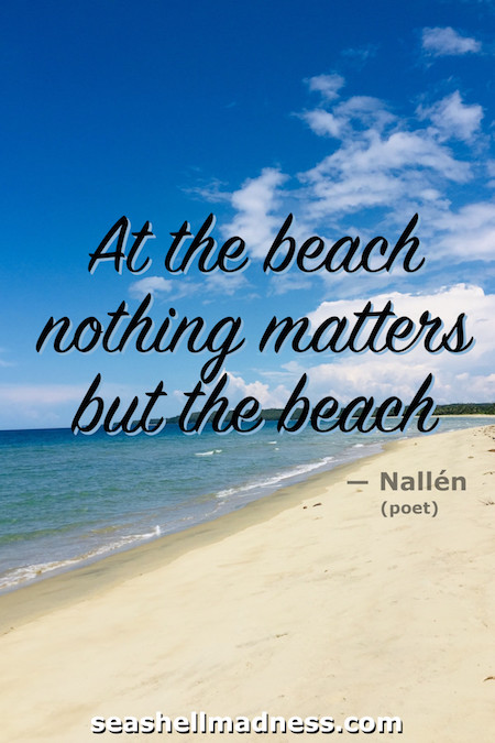 Nallen Beach Quote: At the beach nothing matters but the beach