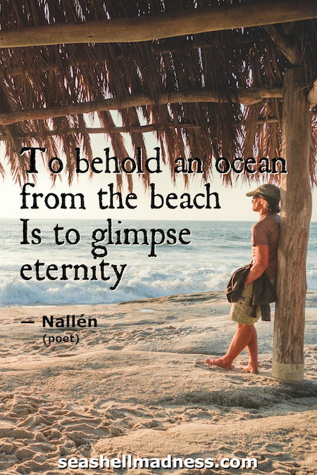 Beach Quote: To behold an ocean from the beach is to glimpse eternity