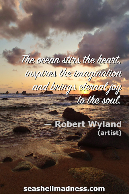 Robert Wyland Beach Quote: The ocean stirs the heart, inspires the imagination and brings eternal joy to the soul.