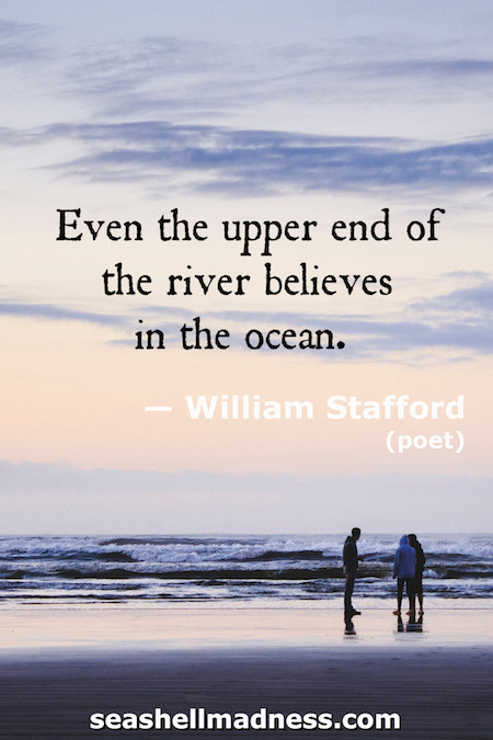 William Stafford Beach Quote: Even the upper end of the river believes in the ocean