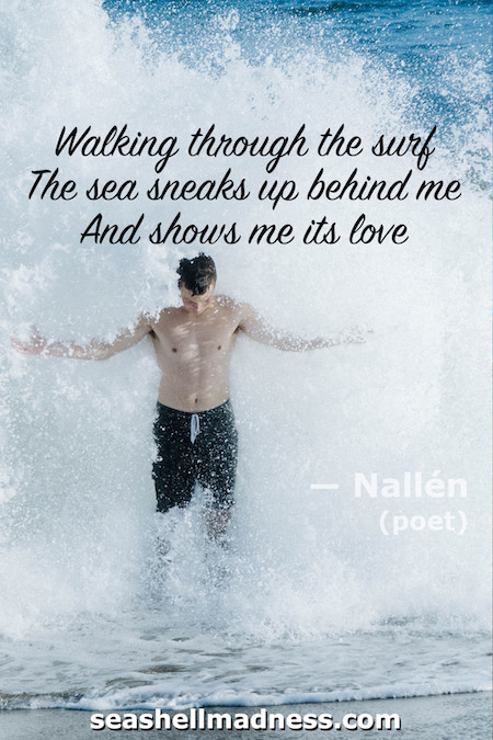 Beach Quote: Walking through the surf, the sea sneaks up behind me, and shows me its love