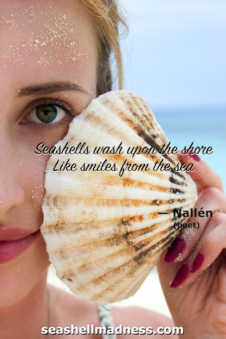 Beach Quote: Seashells wash upon the shore like smiles from the sea