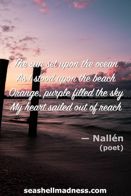 Beach Quote: The sun set upon the ocean. As I stood upon the beach, orange, purple filled the sky. My heart sailed out of reach.