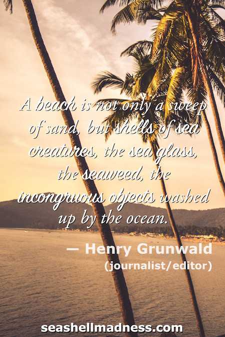 Henry Grunwald Beach Quote: A beach is not only a sweep of sand, but shells of sea creatures, the sea glass, the seaweed, the incongruous objects washed up by the ocean.