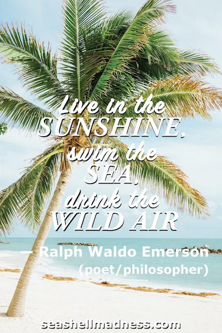 Ralph Waldo Emerson: Live in the sunshine, swim the sea, drink the wild air.