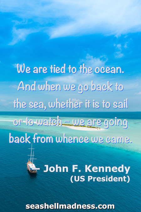 John F. Kennedy Beach Quote: We are tied to the ocean,. And when we go back to the sea, whether it is to sail or to watch, we are going back from whence we came.