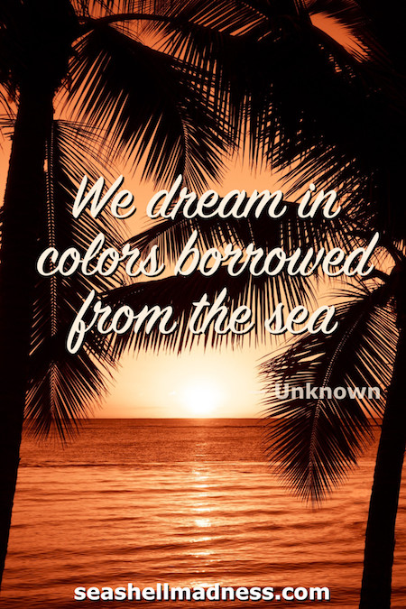 Unknown Author Beach Quote: We dream in colors borrowed from the sea