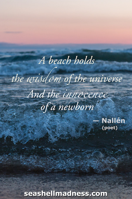 Beach Quote: A beach holds the wisdom of the universe and the innocence of a newborn