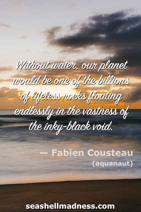 Fabien Cousteau Beach Quote: Without water, our planet would be one of the billions of liefeless rocks floating endlressly in the vastness of the inky-black void