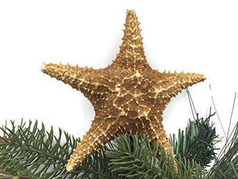 Caribbean Starfish Christmas Tree Topper