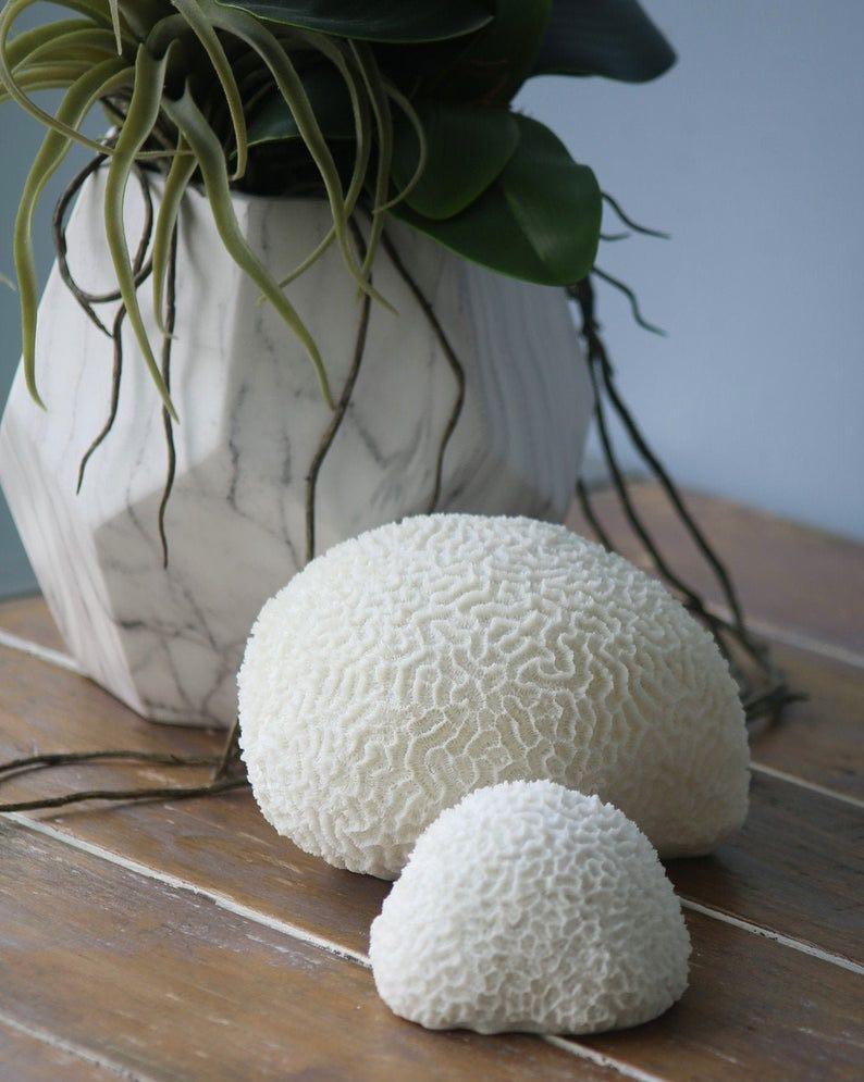 Hampton's Style Faux Coral Sculpture