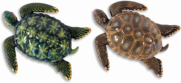Assorted Sea Turtles