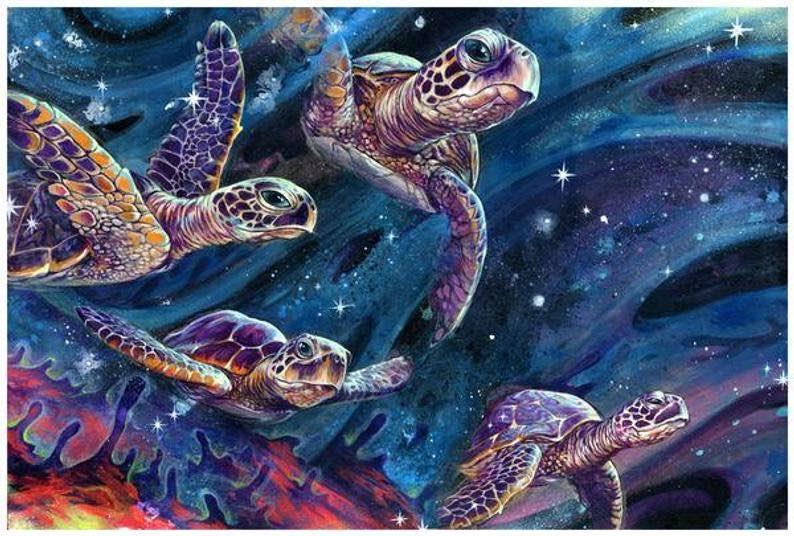 """""""Intershellar"""" Sea Turtle Art Print"""
