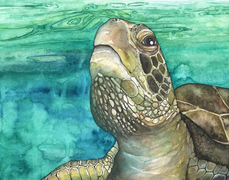 Sea Turtle Watercolor Painting Print