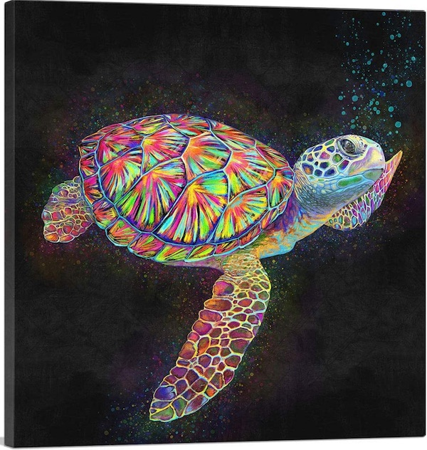 Sea Turtle Reptile