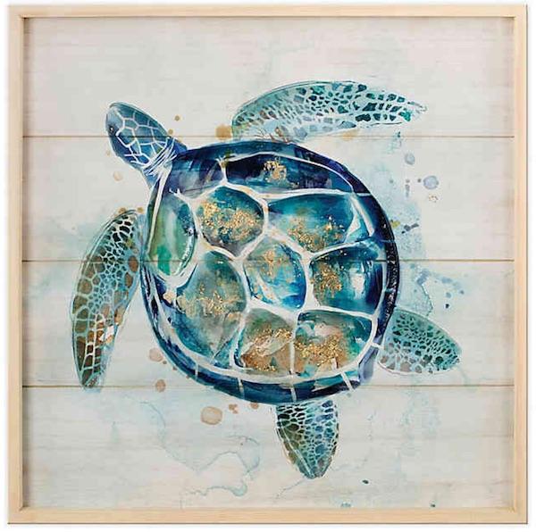 Wadou Turtle