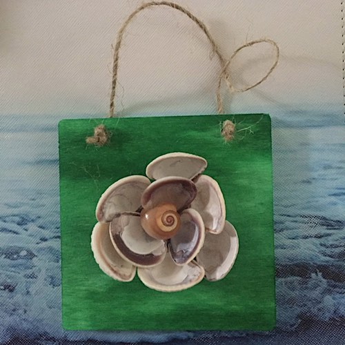 Seashell Flower by Colleen Ymbras-Pulitano