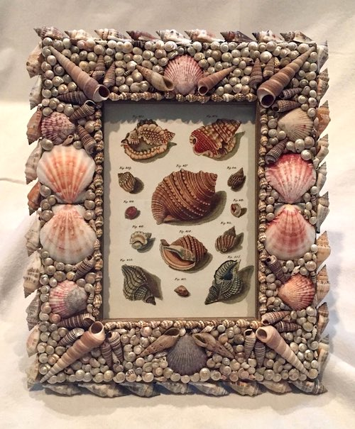 Seashell Frame by Dolores Marchan