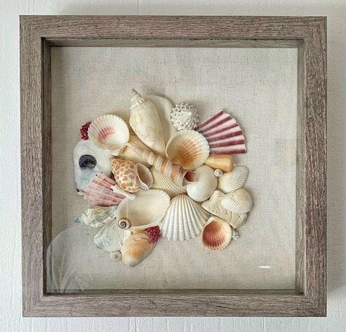 Seashell Collage by Jess Faro