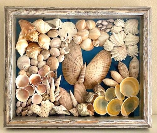 Seashell Shadow Box by Toni Valdes