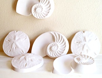 Seashell Wall Sculptures