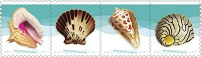 USPS Seashells Postcard Stamps