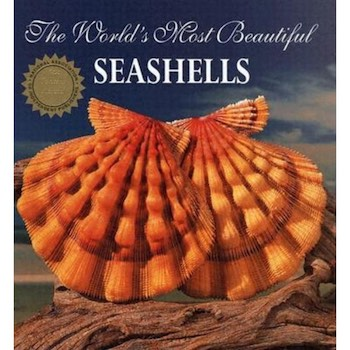 The World's Most Beautiful Seashells (Book)